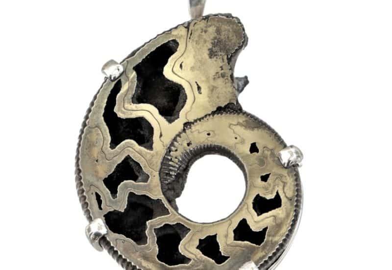 Increible colgante ammonites piritizado