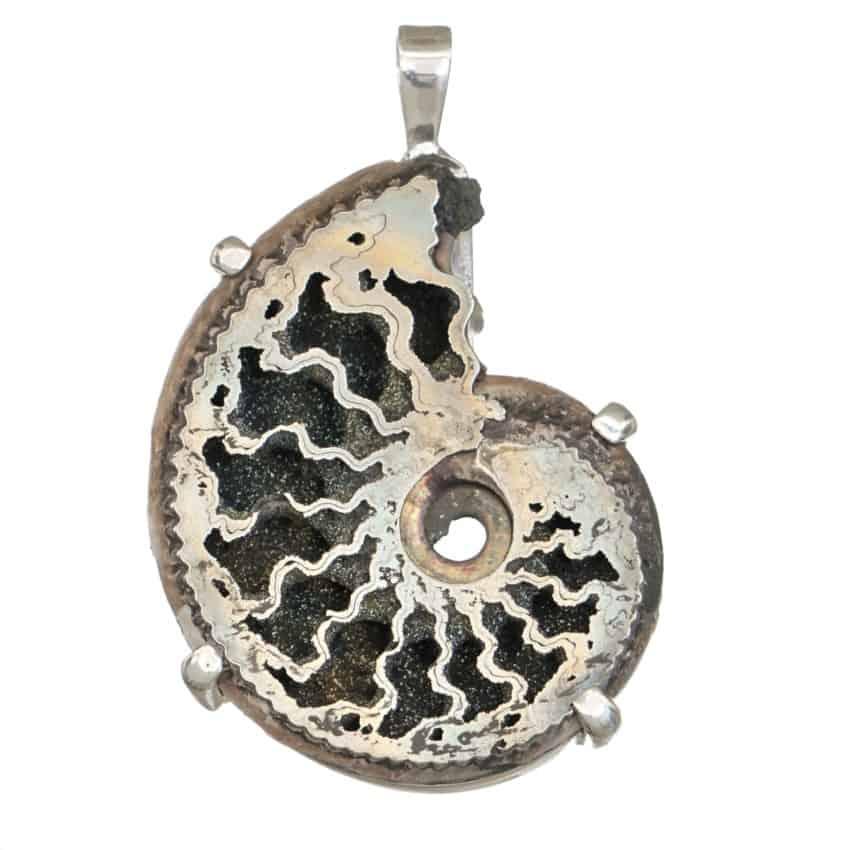 Colgante exclusivo de plata con fósil de Ammonites piritizado