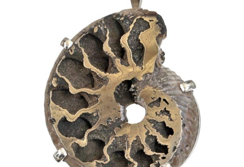 Espectacular colgante ammonites piritizado
