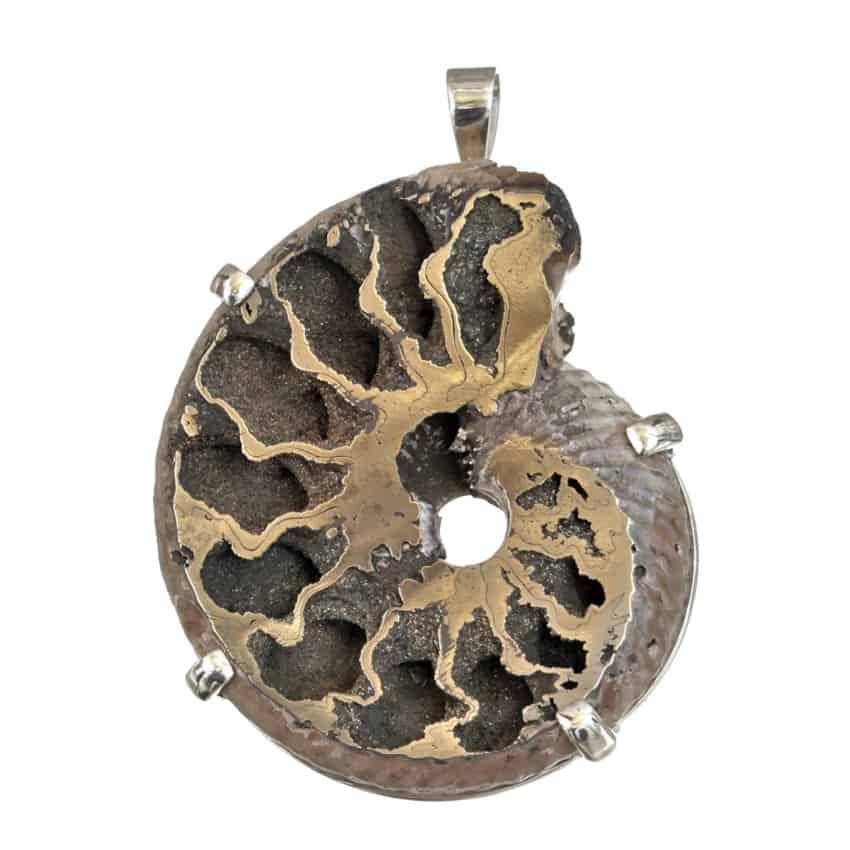 Colgante exclusivo de ammonites piritizado montado en plata 925 con sistema de cuatro garras (2)